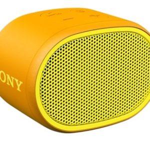 Enceinte portable Sony SRSXB01Y.CE7 Boutiques Toulouse