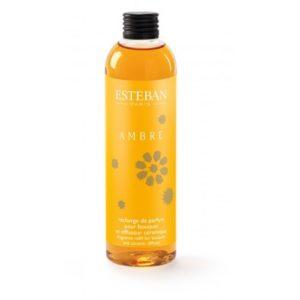 recharge Bouquet parfumé décoratif esteban ambre 1