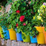 Pot de fleur et bac Toulouse Boutiques