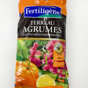 Terreau agrumes jardinerie toulouse