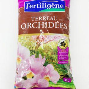 Terreau orchidées jardinerie toulouse