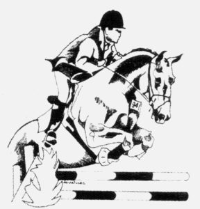 Magasins matériel équitation Toulouse Equi sud boutique