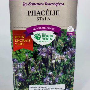 Phacélie Toulouse jardinerie