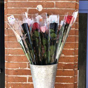 Roses eternelles Toulouse Boutiques Allo Casa