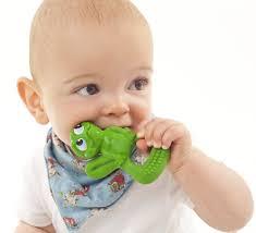 Bébé mache anneau Lanco TOulouse Boutiques