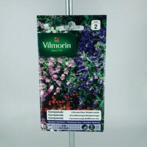 Campanule à grosse fleur simple varié graines Vilmorin au parfait jardinier Toulouse Boutiques.com