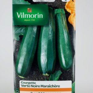 Courgette Verte Noire Maraîchère Jardinerie Toulouse