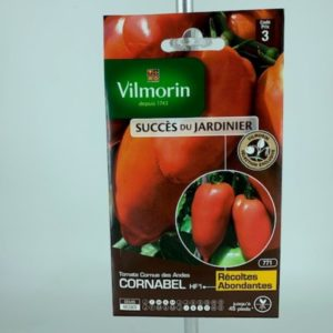 Tomate Corne des Ande Cornabel HF1 jardinerie Toulouse