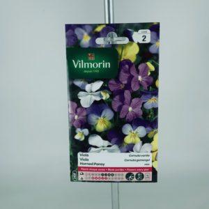 Viola cornuta variée graines Toulouse Boutique