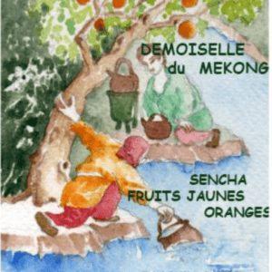 thé vert pêche orange rose jasmin Toulouse