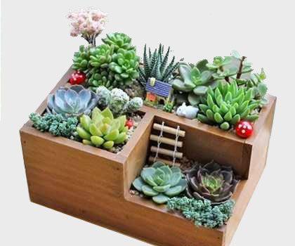 Jardin, animalerie, bricolage