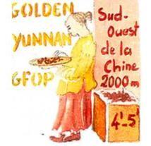 Thé Golden Yunnan TOULOUSE