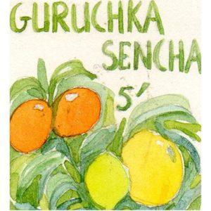 Guruchka sencha TOULOUSE